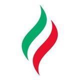 Логотип Татнефть имени В.Д. Шашина