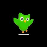 Логотип Duolingo
